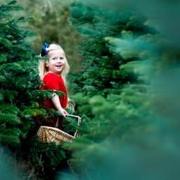 Christmas mini shoot Suffolk Belinda Grant Photography