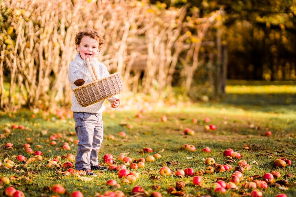 Autumn Apples Belinda Grant Photography